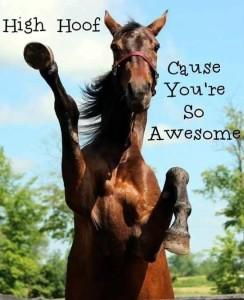 horse high hoof!
