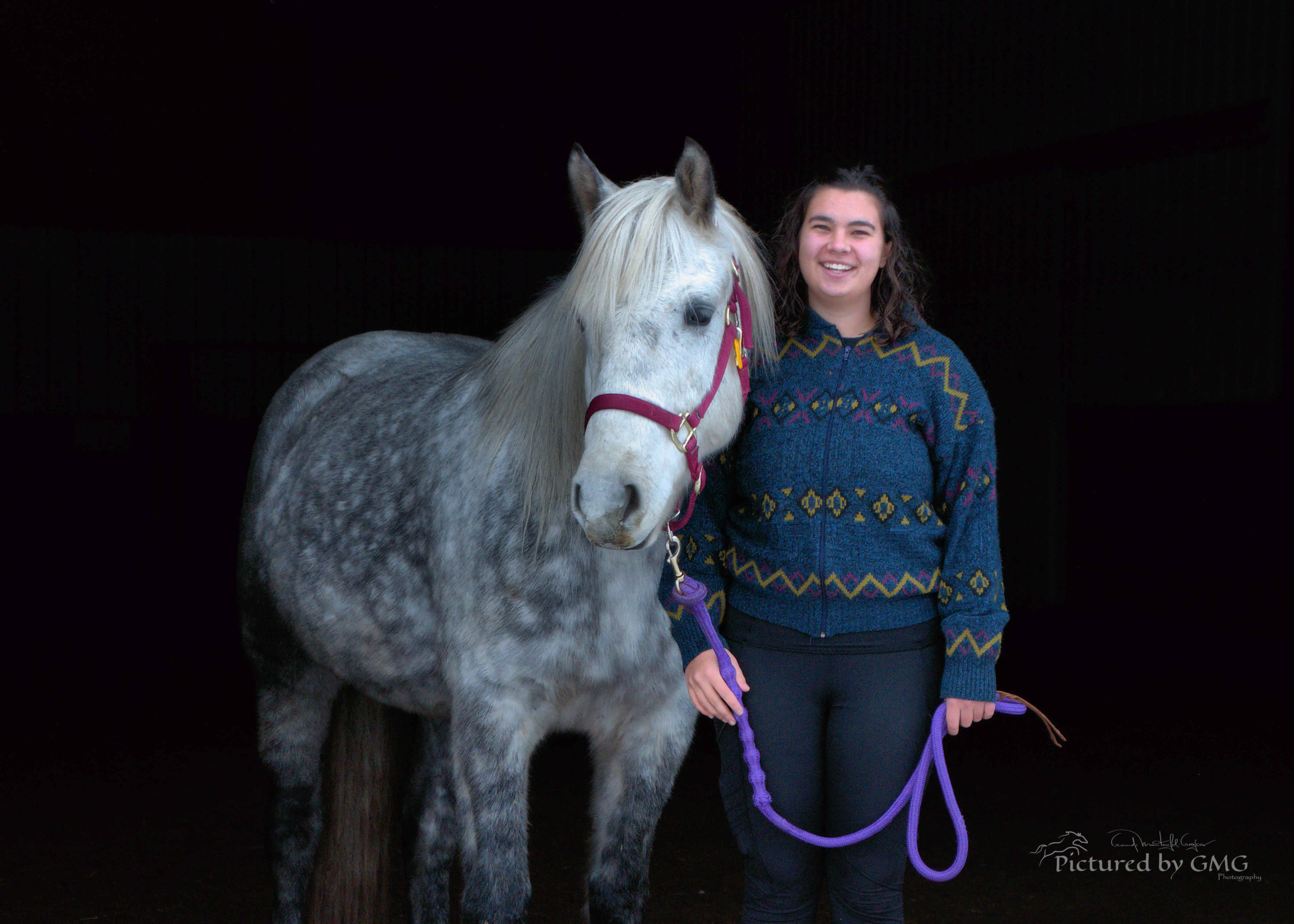 Instructor and horse