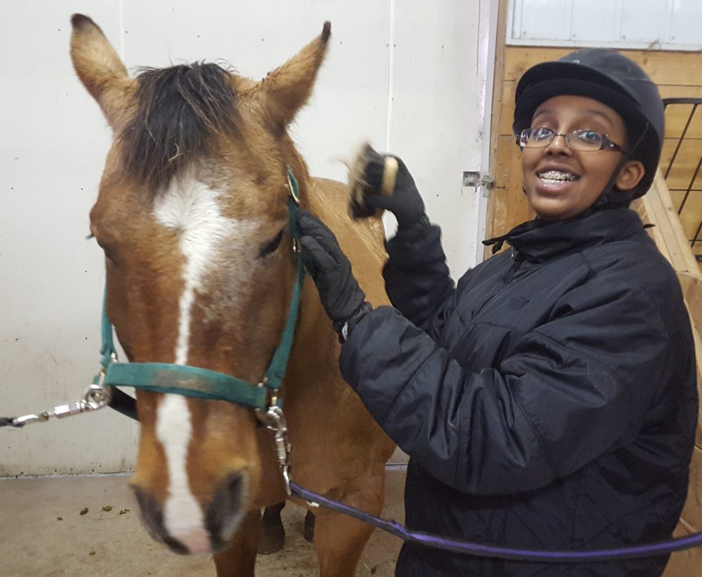 Student Grooming Horse