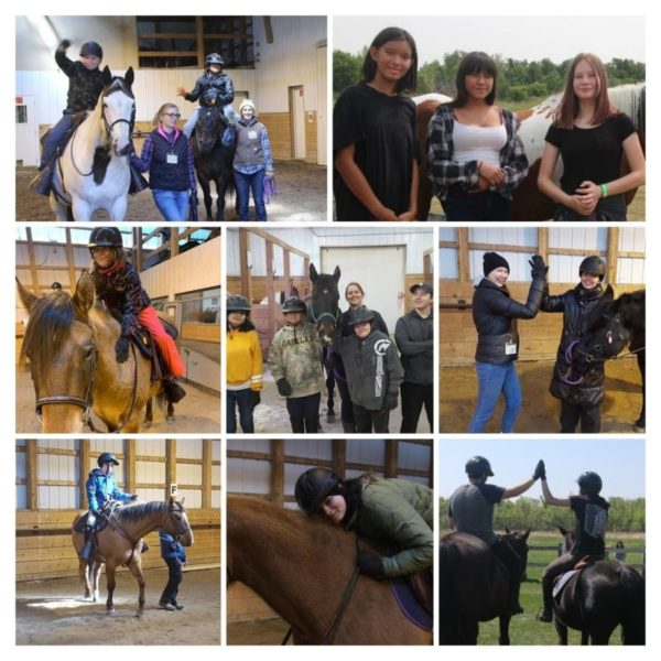 Collage of pictures, kids with horses