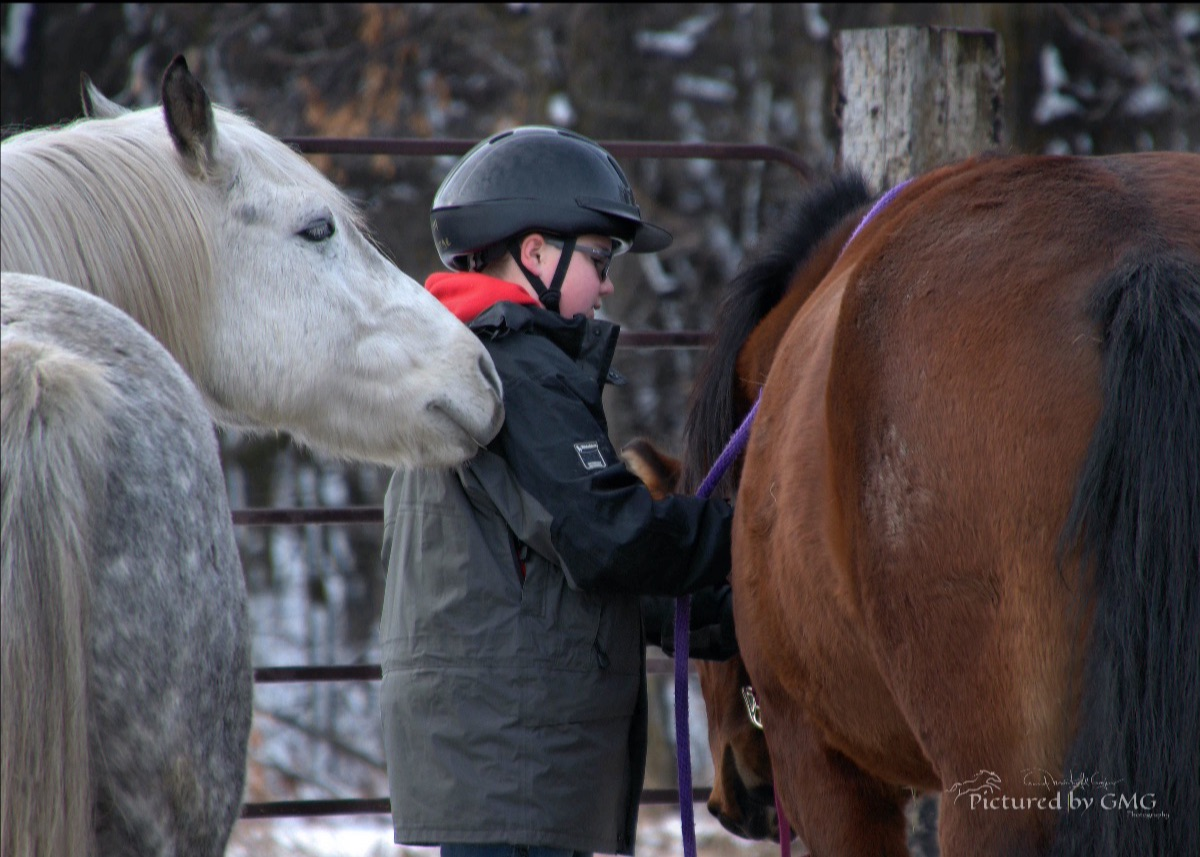 Person and two horses